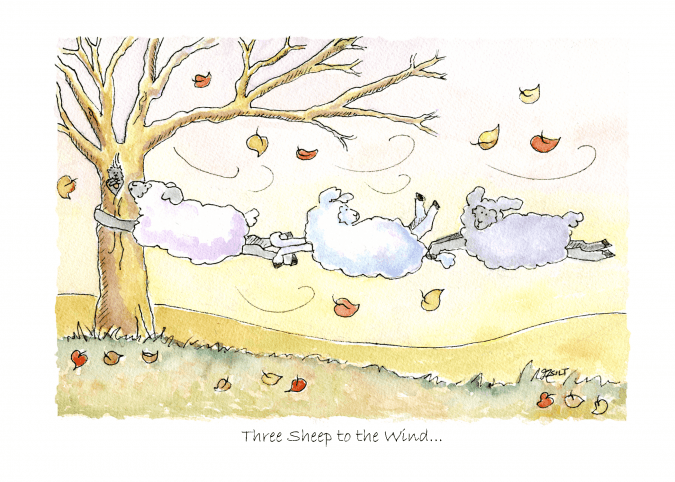 Three Sheep to the Wind